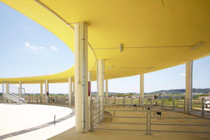 Livestock Marketplace - MetroPolis